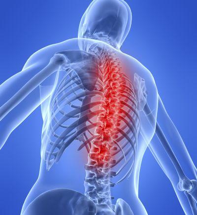 4o Παγκόσμιο Συνέδριο του Bone, Muscles & Joint Diseases